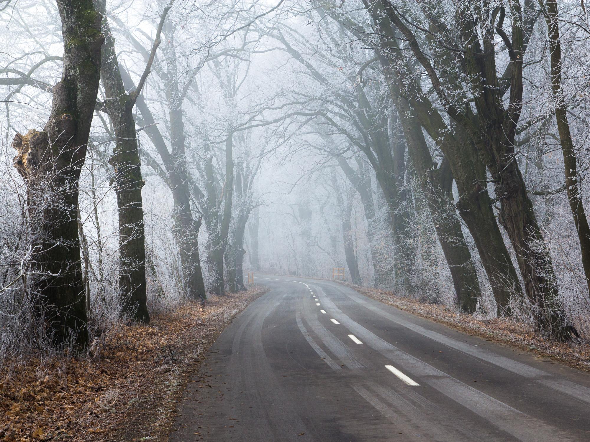 "cestou ""neznámou"""